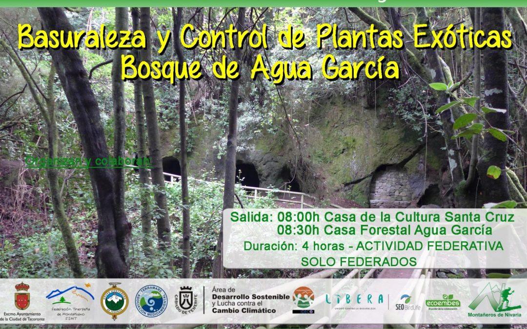 Basuraleza y control de plantas exóticas en el Bosque de Agua García