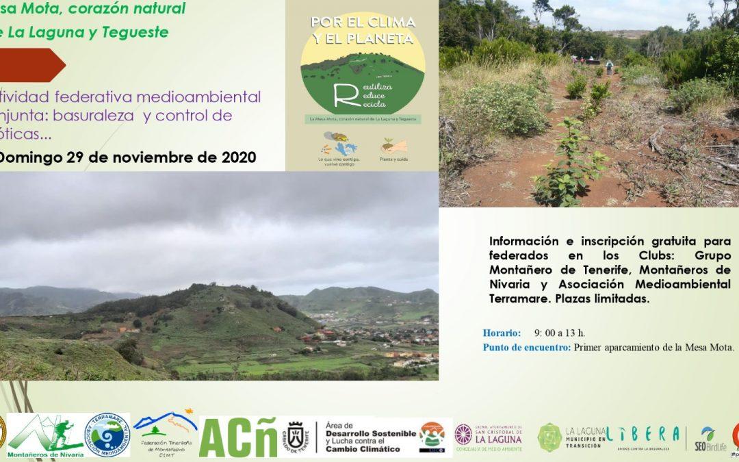 Actividad Federativa Medioambiental del Grupo Montañero de Tenerife