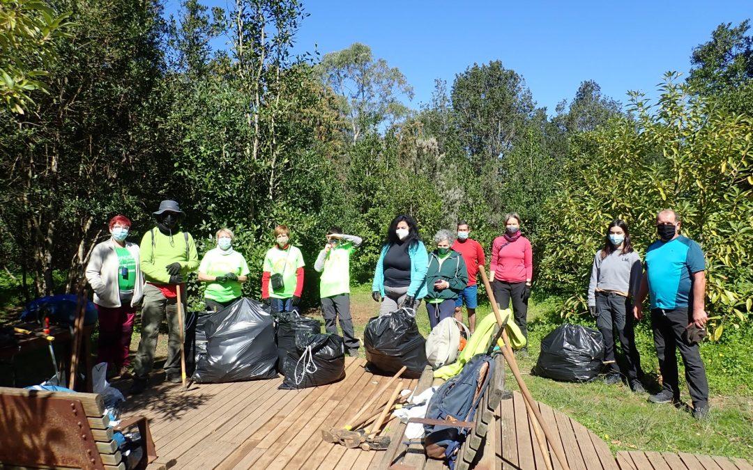 Voluntarios en el Bosque de Agua García de Montañeros de Nivaria