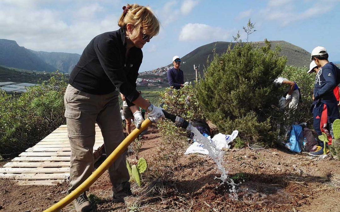El voluntariado ambiental, importante para la conservación del territorio