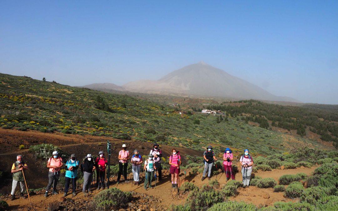 Actividad Montañeros de Nivaria – Circular Portillo, Montaña Guamaso