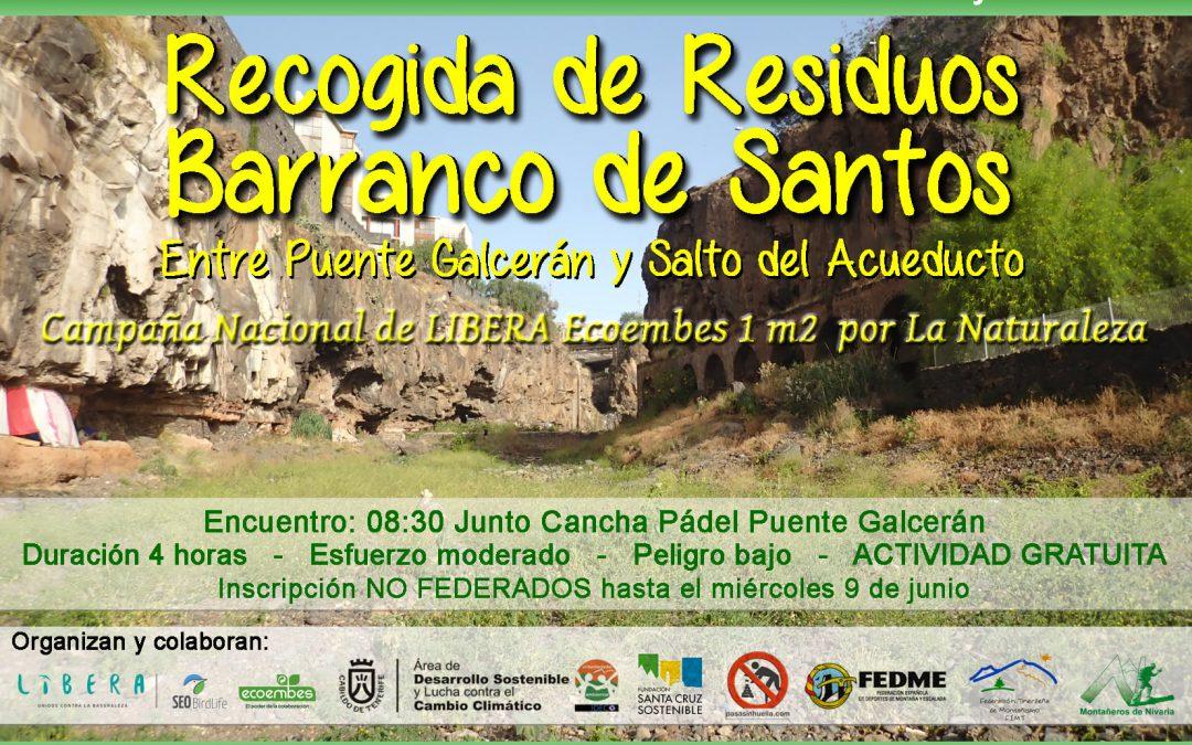 Actividad Medioambiental de Montañeros de Nivaria